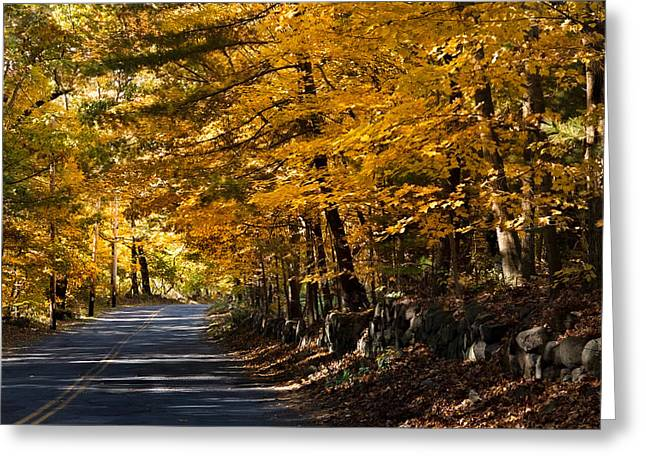 New England Greeting Cards - The road less traveled Greeting Card by Jeff Folger