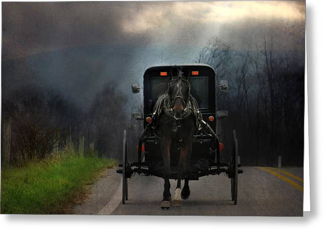 Rural Road Greeting Cards - The Road Less Traveled Greeting Card by Lori Deiter
