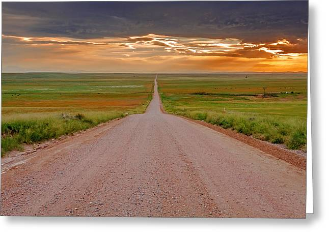 Leading Lines Greeting Cards - The Road Less Traveled Greeting Card by Teri Virbickis