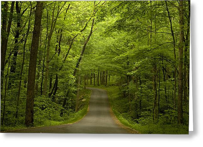 The Road Less Travelled Greeting Card by Andrew Soundarajan