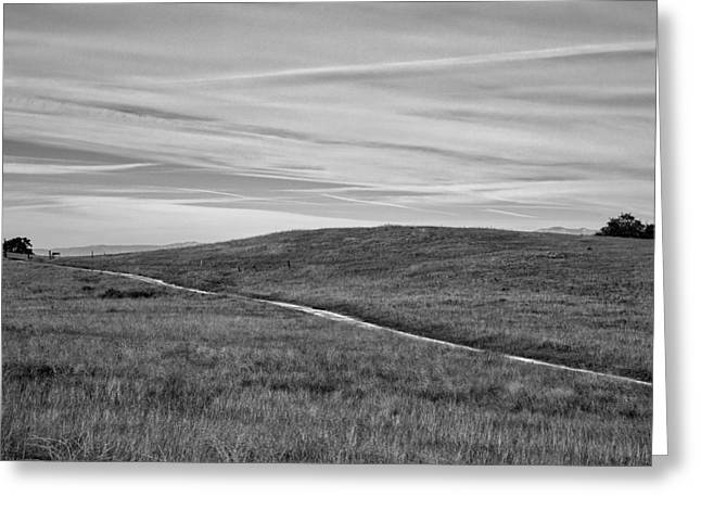 Nature Preserve Greeting Cards - The Road that Leads you Home Greeting Card by Peter Tellone