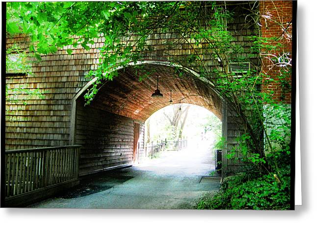 Park Scene Greeting Cards - The Road to Beyond Greeting Card by Shawn Dall