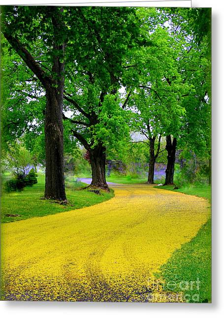 Berkshires Of New England Greeting Cards - The Road to Oz Greeting Card by Linda Galok