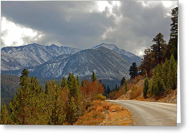 Little Lakes Valley Greeting Cards - The Road to Rock Creek Greeting Card by Lynn Bauer