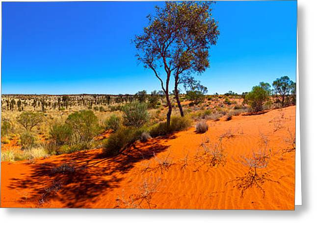 The Trees Greeting Cards - The Road to Uluru Greeting Card by Bill  Robinson