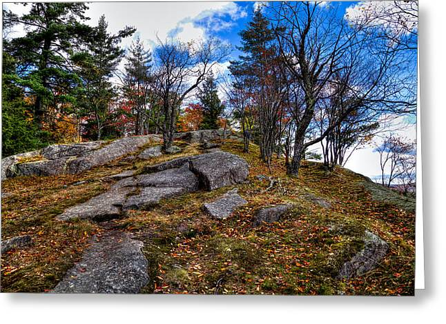The Rocks Above Eagle Bay IIi Greeting Card by David Patterson
