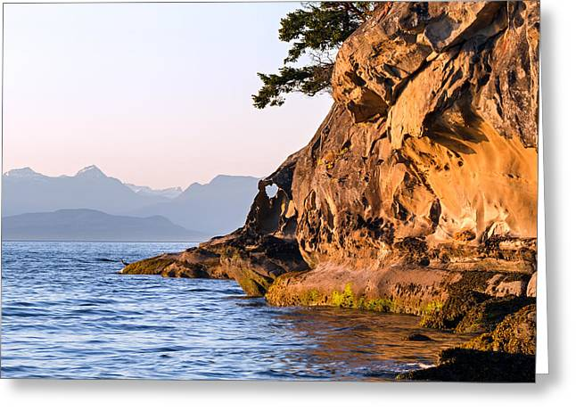 The Rocky Shore Of Biggs Park Greeting Card by Michael Russell