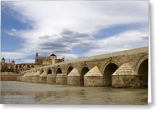 Southern Province Greeting Cards - The Roman Bridge Of Cordoba Greeting Card by Lorraine Devon Wilke