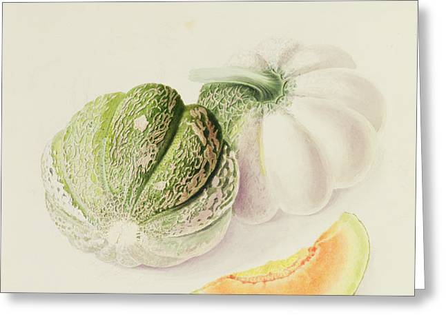 The Romana Melon Greeting Card by William Hooker