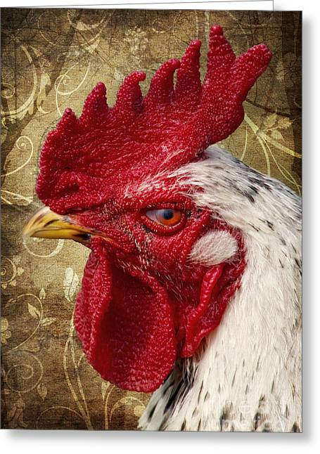 Red Crest Greeting Cards - The rooster Greeting Card by Angela Doelling AD DESIGN Photo and PhotoArt