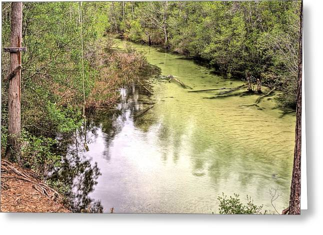 Florida Panhandle Greeting Cards - The Rope Swing Greeting Card by JC Findley