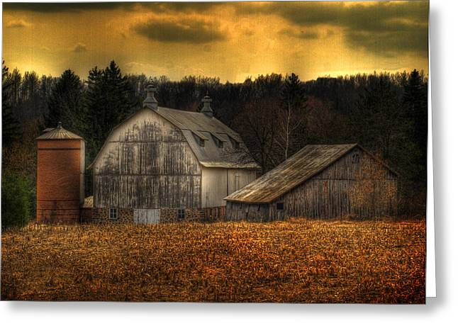 Shed Photographs Greeting Cards - The Rose Farm Greeting Card by Thomas Young