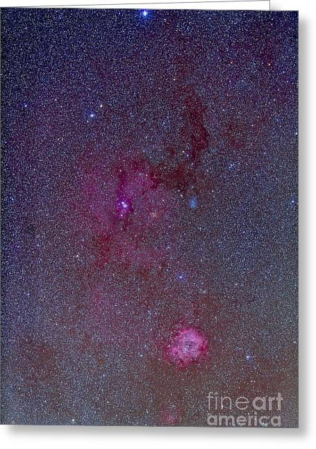 Rosette Greeting Cards - The Rosette Nebula With Nebulosity Greeting Card by Alan Dyer