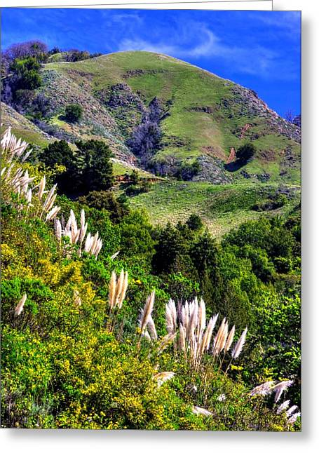 Big Sur Ca Greeting Cards - The Rugged and Beautiful Mountains and Hills in the Big Sur Region of the Central California Coast Greeting Card by Michael Mazaika