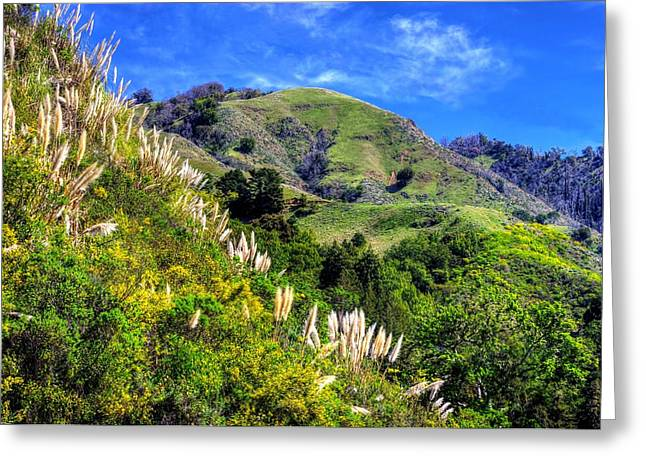Big Sur Ca Greeting Cards - The Rugged Mountains and Hills of the Big Sur Along the Central California Coast - No. 1 Greeting Card by Michael Mazaika