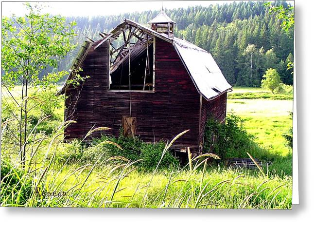 Old Barns Greeting Cards - The Ruined Barn Greeting Card by Sadie Reneau