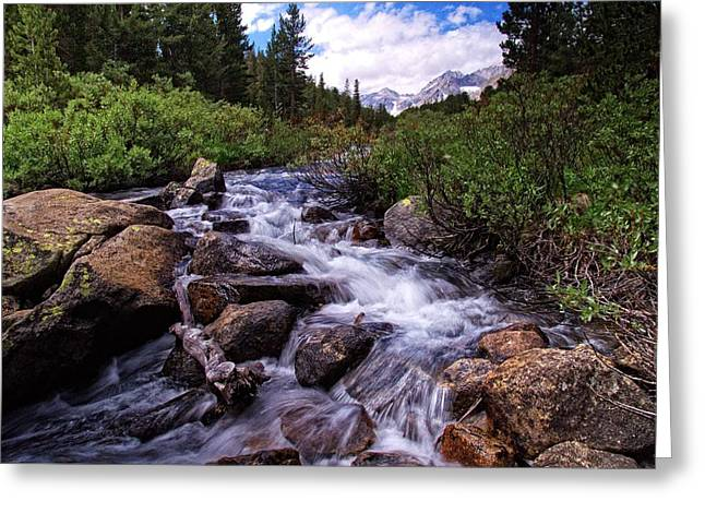 Little Lakes Valley Greeting Cards - The Rush of Rock Creek Greeting Card by Lynn Bauer