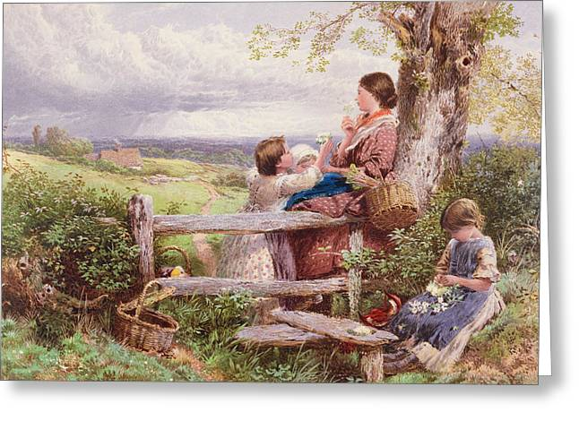Daisy Drawings Greeting Cards - The Rustic Stile Greeting Card by Myles Birket Foster