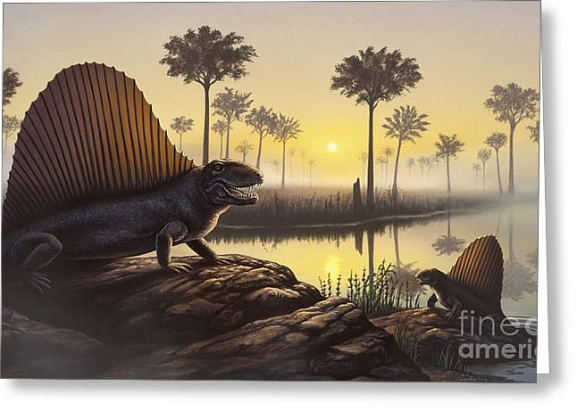 Sunbathing Greeting Cards - The Sailed-back Dimetrodon Sunbathes Greeting Card by Jerry LoFaro
