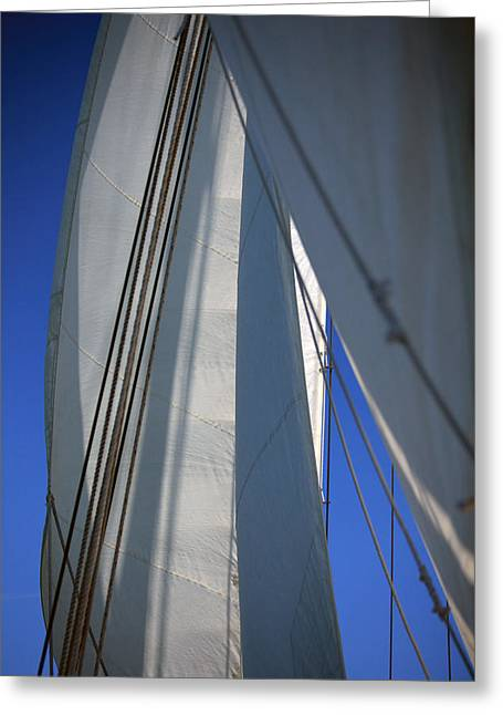 Schooner Greeting Cards - The Sails Greeting Card by Karol  Livote