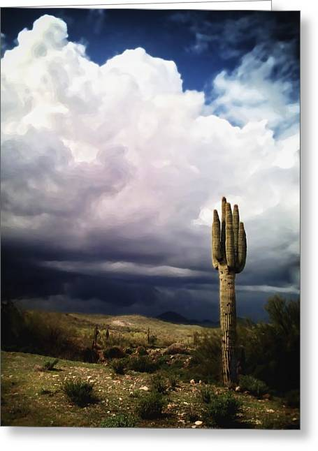 Sean Greeting Cards - The Scent of a Wet Desert Greeting Card by Sean Foster