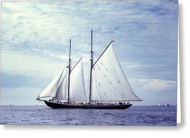 The Schooner Bluenose 2 Again Greeting Card by George Cousins