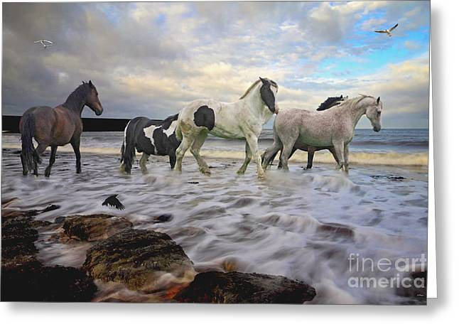 Fineartprint Greeting Cards - The Sea Horses Greeting Card by Wobblymol Davis