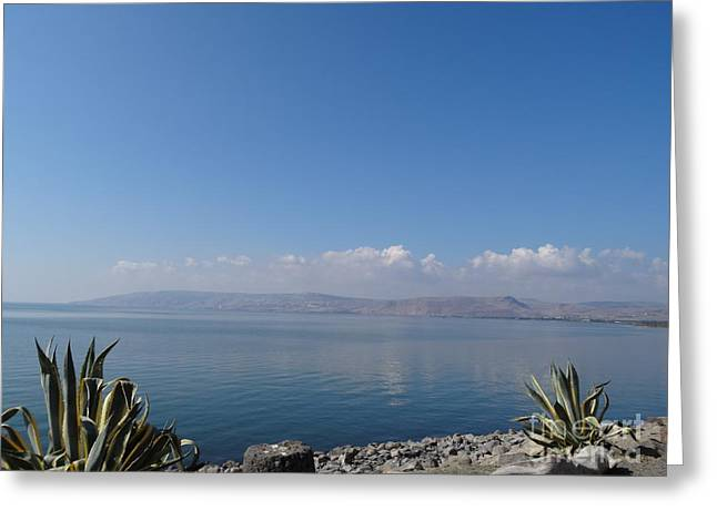 Christ Walking On Water Greeting Cards - The Sea of Galilee at Capernaum Greeting Card by Karen J Jones