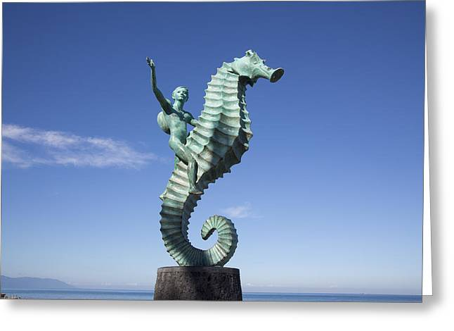 Malecon Greeting Cards - The Seahorse Greeting Card by Douglas Peebles