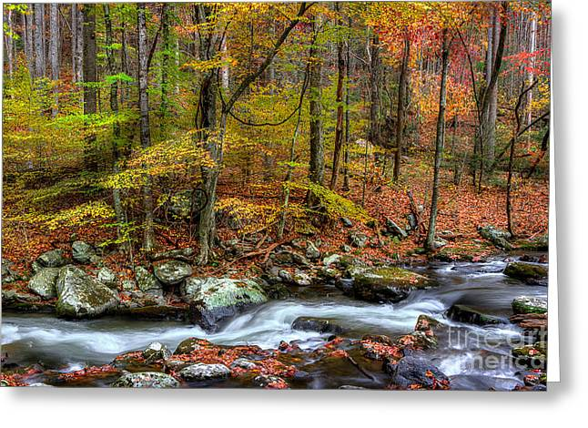 Late Fall Greeting Cards - The Season Flows Along Greeting Card by Michael Eingle