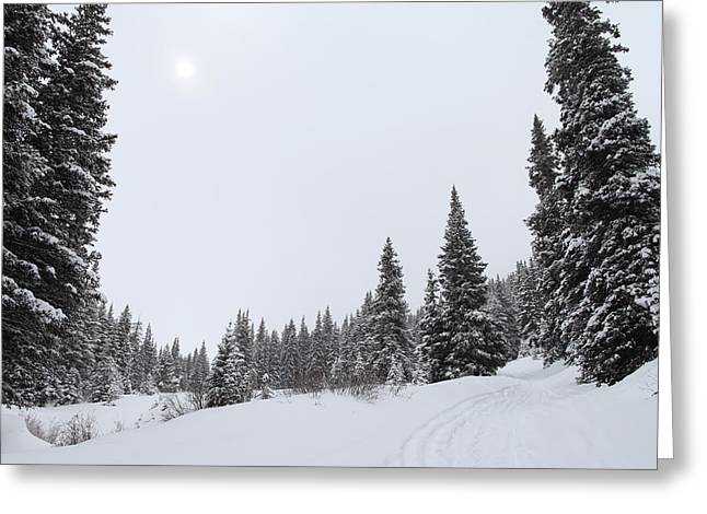 Summit County Colorado Greeting Cards - The Season of White Greeting Card by Eric Glaser