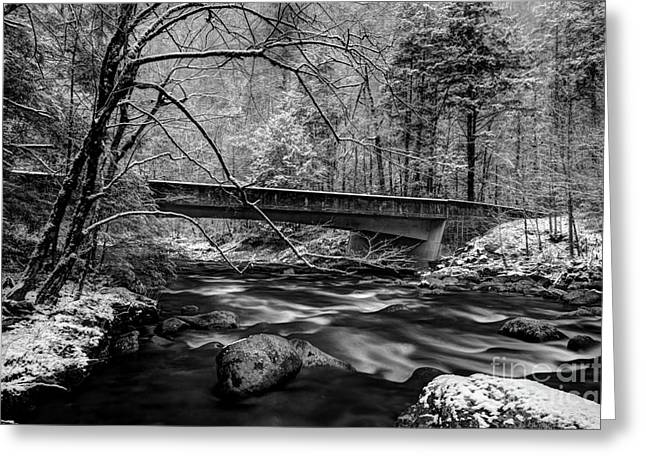 River Scenes Greeting Cards - The Seasons Promise Greeting Card by Michael Eingle