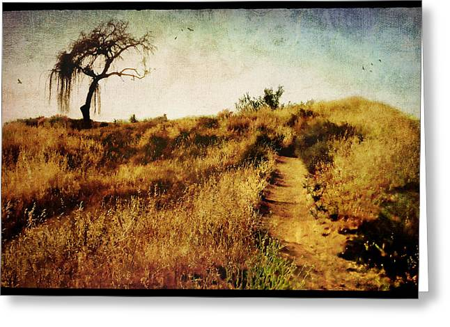 The Secret Pathway to Aspiration Greeting Card by Brett Pfister