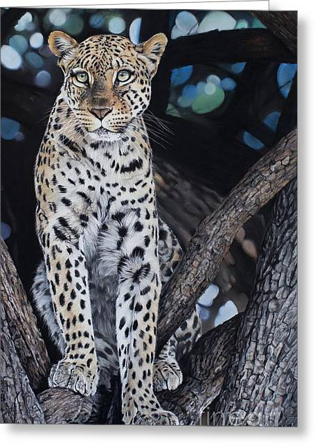 Feline Pastels Greeting Cards - The Secret Spot Greeting Card by Joni Beinborn