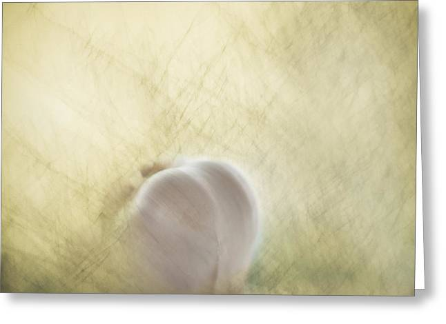 Artistic Photography Greeting Cards - The seductive garlic Greeting Card by Constance Fein Harding