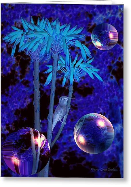 Numbers Plus Photography Digital Greeting Cards - The Seeker Greeting Card by Joyce Dickens