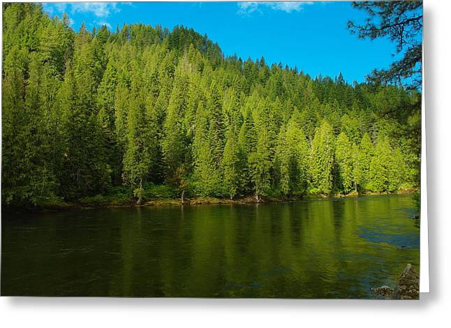 Scenic Idaho Greeting Cards - The Seleway River Idaho Greeting Card by Jeff  Swan