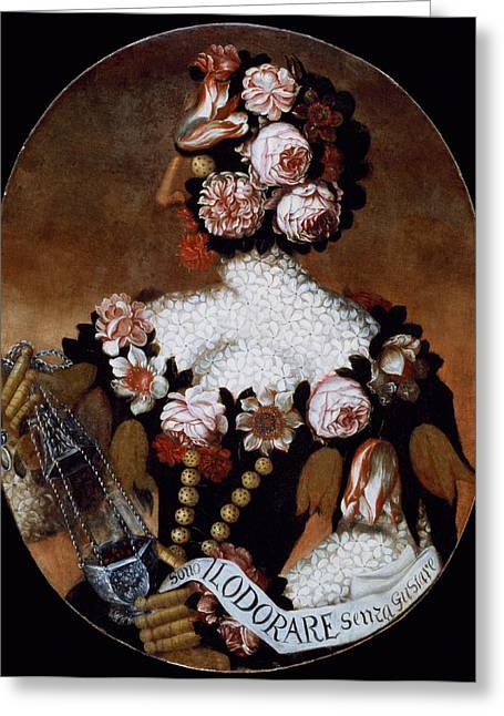 The Sense Of Smell Greeting Card by Giuseppe Arcimboldo