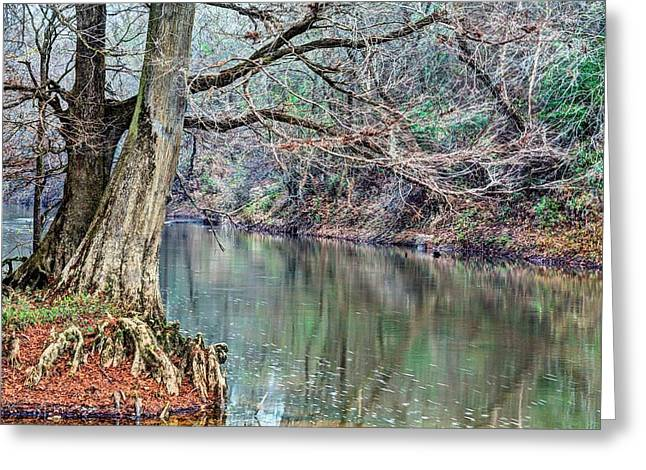 The South Photographs Greeting Cards - The Sepulga River Greeting Card by JC Findley