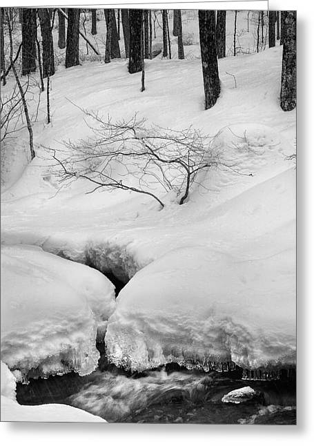 Connecticut Winter Greeting Cards - The Serenity Of WInter Greeting Card by Bill  Wakeley
