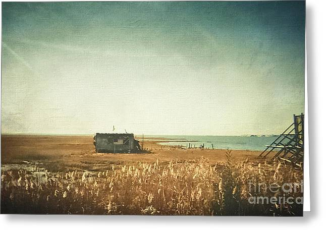 Hurricane Sandy Photographs Greeting Cards - The Shack - LBI Greeting Card by Colleen Kammerer