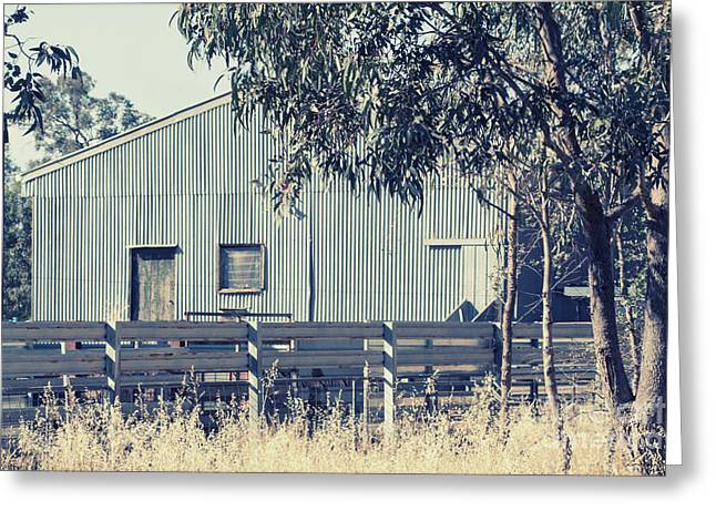 Shed Greeting Cards - The shearing shed Greeting Card by Linda Lees
