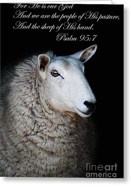 Psalm One Greeting Cards - The Sheep of His Hand Greeting Card by Stephanie Frey