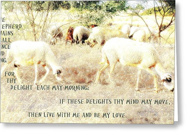 Sweating Photographs Greeting Cards - The Shepherd Swains Greeting Card by Hilde Widerberg