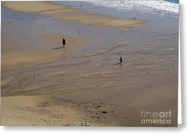The Shore Greeting Card by Gregory Dyer