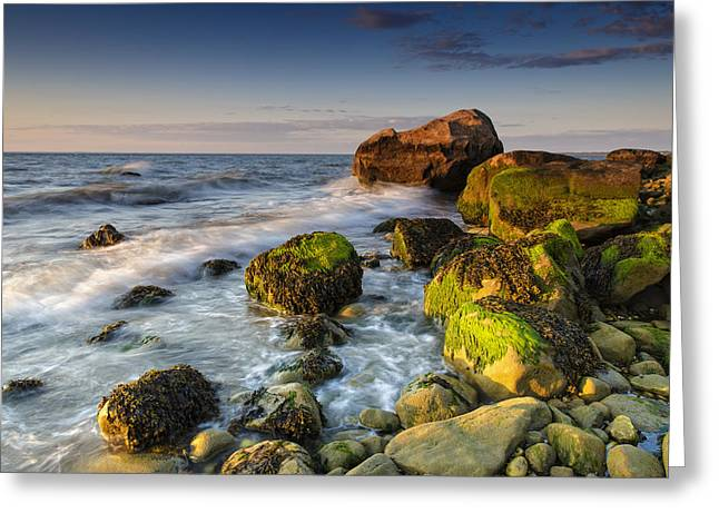 The Shore Of The Sound Greeting Card by Rick Berk