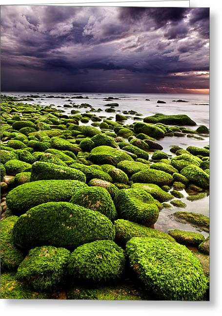The Silence After The Storm Greeting Card by Jorge Maia