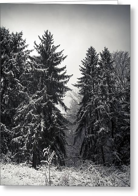 Virginia Landscape Greeting Cards - The Silent Season Greeting Card by Shane Holsclaw