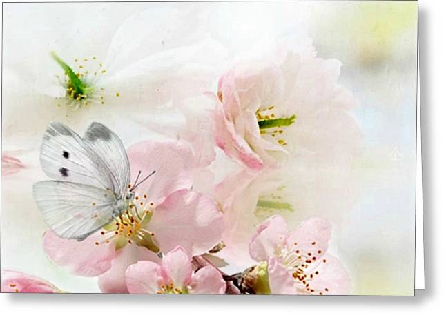 The Silent World Of A Butterfly Greeting Card by Morag Bates