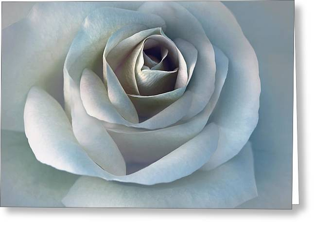 Light Blue Grey Greeting Cards - The Silver Luminous Rose Flower Greeting Card by Jennie Marie Schell
